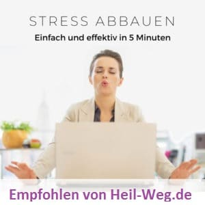 Download Meditation mit neuralen Beats Stressfrei in 5 Minuten als MP3
